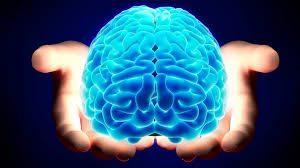 sostenere il benessere del cervello e della mente
